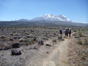 Heading across Shira Plateau to Shira 2 Camp