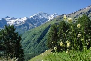 Elbrus-6808