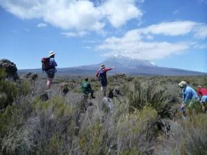 Kilimanjaro-1010142