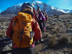 Kilimanjaro-1010278