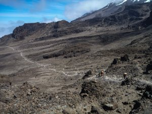 Kilimanjaro-1010297
