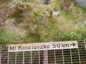 Kosciusko-1000986